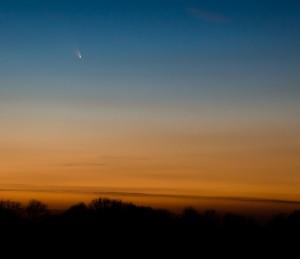 15 mars 2013, Régine HEINTZ. Difficile de trouver cette comète avec une magnitude bien plus faible par rapport aux prévisions ! J'avais déjà fait la veille quelques photos de la comète (vraiment basse sur l'horizon), avec en prime la Lune et sa lumière cendrée, mais c'est le vendredi 15 mars que j'ai décidé de m'éloigner du village et de trouver un endroit sympathique dans les champs avec une rangée d'arbres. Cet avant-plan permettait de placer la comète dans son « contexte ».Dès la tombée de la nuit, j'ai fait de nombreuses photos, avec différents temps de pose. Mais avec une focale de 105 mm, l'idéal est de ne pas dépasser les 3-4 secondes, au-delà, les étoiles ne sont plus ponctuelles. J'ai utilisé un Canon 5D Mark III avec un objectif de 24-105 mm f4. Je n'avais malheureusement pas de téléobjectif plus puissant, mais la qualité du reflex et la définition du capteur m'a permis de recadrer les photos sans trop de pertes. Un petit post-traitement avec le logiciel photo Lightroom 4 était nécessaire pour bien faire ressortir les détails de l'image (luminosité, contraste et netteté). Les couleurs du crépuscule sont encore bien présentes mais la comète se voit bien. Photo prise à 19h38 (heure locale). Détails de la prise de vue : objectif à 105 mm, 3s à f4, 640 ISO.